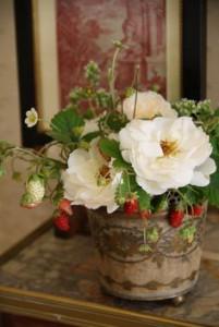 fructe flori 5